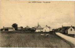 Loury - Vue générale - Loury
