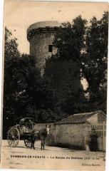 Dammarie-en-Puisaye-Le Donjon du Chateau - Dammarie-en-Puisaye