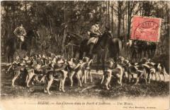 Blere Les Chasses dans la Foret d'Amboise - Bléré