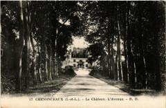 Chenonceaux Le Chateau. L'Avenue - Chenonceaux