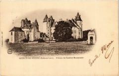 Seuilly-de-Poitou Chateau de Coudray-Montpensier - Seuilly