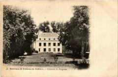 Env. de Chateau-la-Valliere Chateau de Forgeais - Château-la-Vallière
