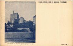 Chateau de Montbazon - Montbazon