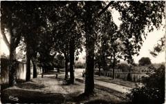 Henrichemont - Les Promenades - Henrichemont
