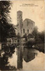 Sagonne Les Ruines et les Fosses du Chateau - Sagonne