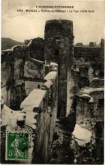 L'Auvergne -Murols - Ruines du Chateau - La Tour (CoteSud) 63 Murol