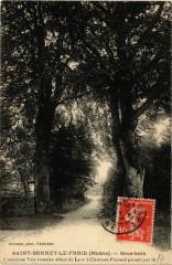 Saint Bonnet le Froid - Sous bois ancienne Voie romaine - Saint-Bonnet-le-Froid