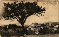 Vue générale de Chavaniac-Lafayette et du Chateau Lafayette (Pres - Chavaniac-Lafayette
