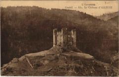 Cantal Le Chateau d'Alleuze France - Alleuze