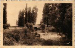 Savigny-en-Revermont - Paysage sur la riviere - Savigny-en-Revermont