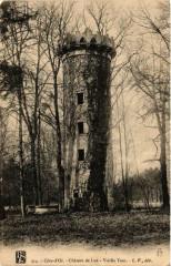 Chateau de Lux - Vieille Tour - Lux