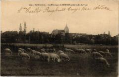 En Nivernais - Les Paturages de Vernoy pres Suilly-la-Tour - Suilly-la-Tour