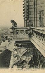 Notre-Dame, Chimères et Gargouilles 75 Paris 4e