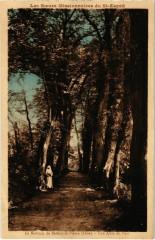 Le Noviciat de Bethisy-Saint-Pierre - Une Allee du Parc - Béthisy-Saint-Pierre