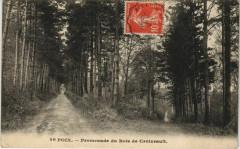 Poix Promenade du Bois de Croixrault - Croixrault