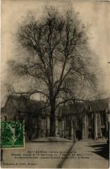 Bayeux - Arbre de la Liberte 14 Bayeux