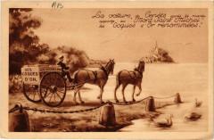 Le Mont Saint-Michel - La Voiture de Genéts - Genêts