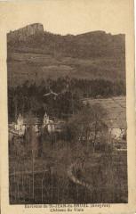 Environs de Saint-Jean-du-Bruel - Chateau du Viala - Saint-Jean-du-Bruel