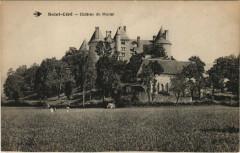 Saint-Cere - Chateau de Montal - Saint-Céré