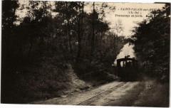 Saint-Palais sur Mer Tram en foret Tram Vapeur - Saint-Palais