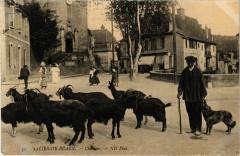 Salies-De-Bearn Chevrier - Salies-de-Béarn