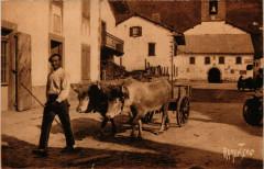 Le Pays Basque - Region de Saint-Etienne-de-Baigorry - Attelage aux... - Saint-Étienne-de-Baïgorry