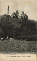 Cabara pres Libourne - Chateau de Blaignac - Cabara