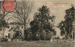 Domaine de Ferrand-Montussan - Montussan