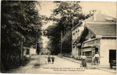 Avenue conduisant de castres a la gare de beautiran - Beautiran