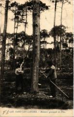Dans les Landes - Resiniers Gemmant les Pins - Folklore - Mant