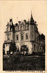 Allonnes-Chateau des Rigaudieres - Allonnes