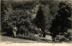 Canton de Saint-Hilaire-des-Loges - Foret de Mervent - Scene - Saint-Hilaire-des-Loges