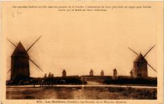 Les Herbiers Les Moulins sur le Mont des Alouettes - Les Herbiers
