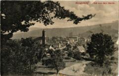 Wangenburg - Blick aus dem Walde - Wangen