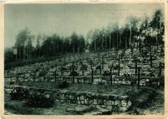 Deutscher Soldatenfriedhof Breitenbach 1928 vollkommen - Breitenbach