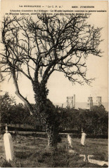 Jumieges-L'ancien cimetiere de l'Abbaye Le Musée lapidaire - Jumièges