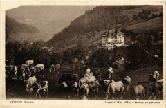 Jougne - Modern Hotel - Vaches au paturage - Jougne
