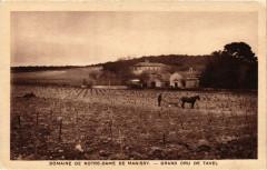 Domaine de Notre-Dame de Manissy - Grand Cru de Tavel - Tavel