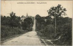 Lussac-les-Eglises - Vue générale - Lussac-les-Églises