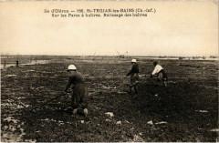 Ile d'Oleron - Saint-Trojan-les-Bains - Saint-Trojan-les-Bains