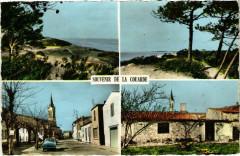 Ile-de-Re - La Couarde - Les Dunes devant le Bois Henri Iv - Bois