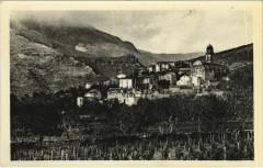 Patrimonio - Cap Corse - Vue Generale Corsica - Corse - Patrimonio