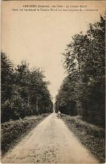 Lucheux La Foret Chemin Royal - Lucheux