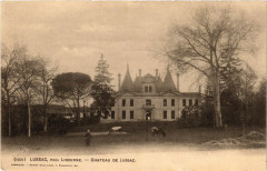 Lussac pres Libourne - Chateau de Lussac - Lussac