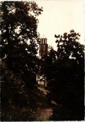 Corse Carpineto - La Clocher - Carpineto