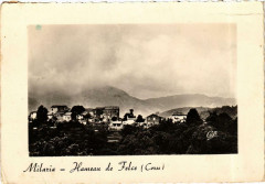 Corse Milaria - Hameau de Felce - Felce