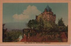 Château de Montfort - Vitrac