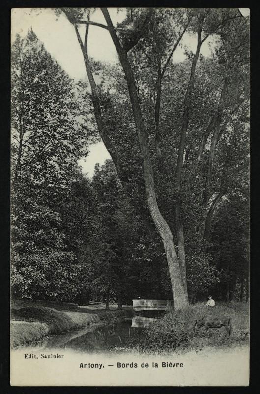 Carte postale ancienne Bords de la Bièvre à Antony