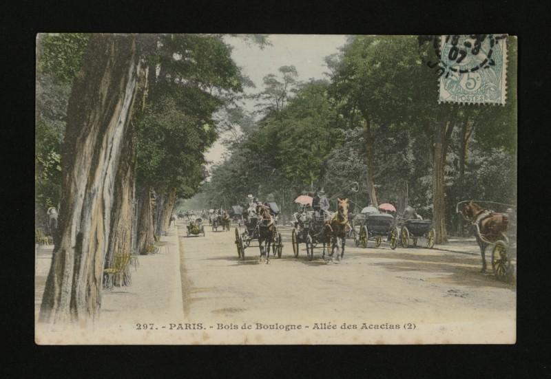 Carte postale ancienne Bois de Boulogne - Allée des Acacias à Paris 16e