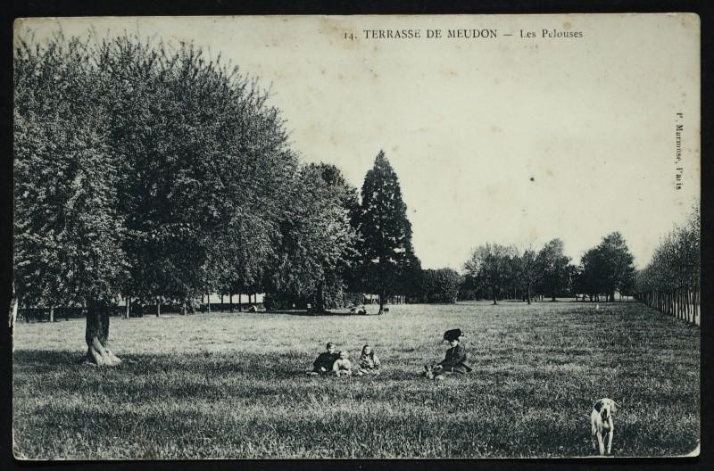 Carte postale ancienne Terrasse de Meudon - Les Pelouses à Meudon